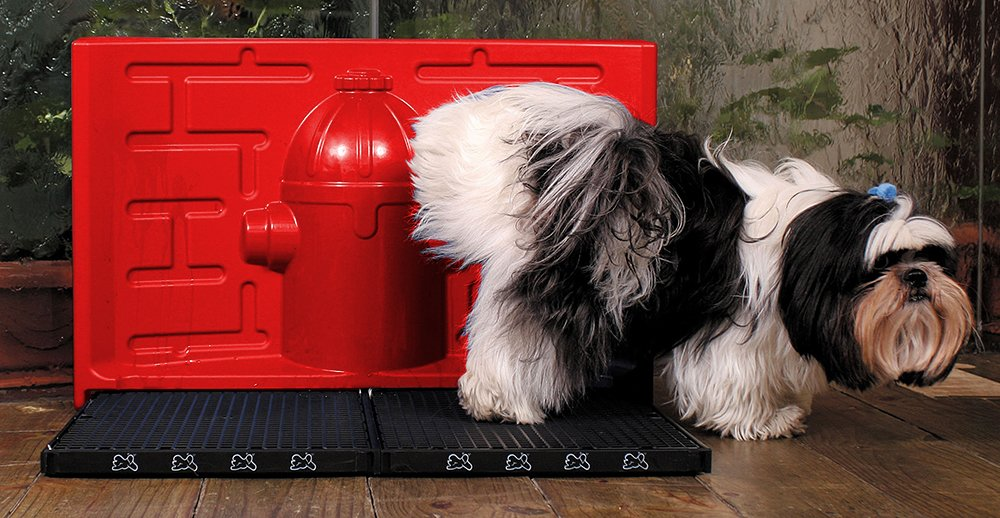 Original Since 2002 PipiDollys Male Set Red and Black is bringing the first toilet with Antibacterial Predection  Dog Potty, Training Toilet, Indoor Pet Dog, Dog Toilet