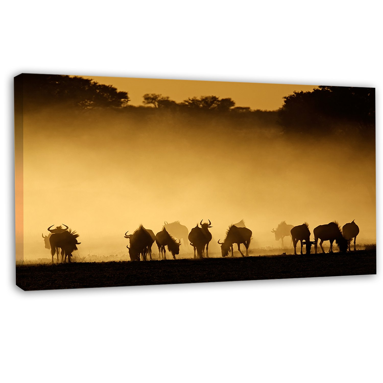 Amazon.com: Blue Wildebeest in Dust African on Canvas Art Wall ...