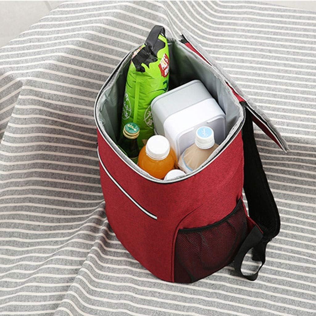 LHT Isolato Borsello Lunch Box Picnic Bag Portatile di Alluminio ispessite Lunch Bag Grande Borsa Impermeabile refrigerato Borse da Picnic (Color : B) A