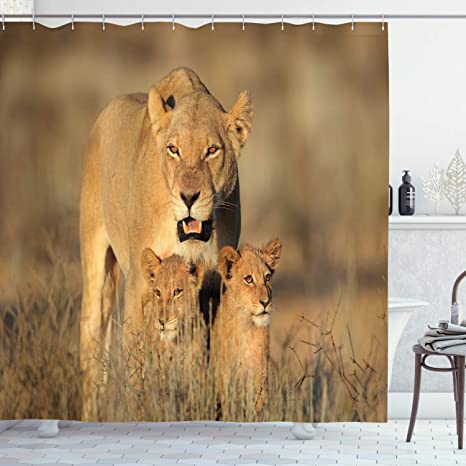 Amazon Com Ambesonne Safari Shower Curtain Mom Lioness And Young Lion Kings In South Nature Big Cats At Wilderness Safari Cloth Fabric Bathroom Decor Set With Hooks 70 Long Cream Home Kitchen