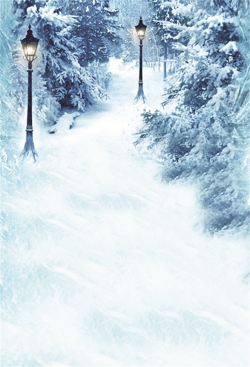 AOFOTO 5x7ft Forest Winter Snowscape Photography Studio Background Outdoor Countryside Snow Scenery Snowfield Snowy Road Lamp Photo Shoot Backdrop New Year 2019 Kid Adult Portrait Photo Studio Props