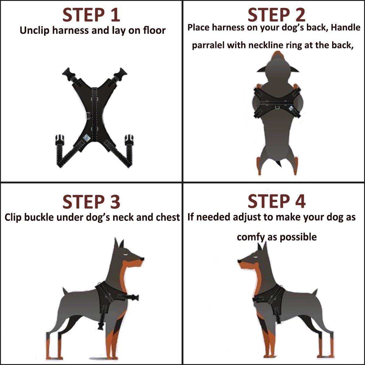 medianos y Grandes Correa incluida Mejor para el Entrenamiento Caminando Transpirable para Perros peque/ños Comodidad Ajustable EAST-BIRD Arn/és para Perro sin tirones