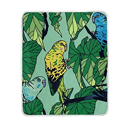 6cf9086181bcf Amazon.com: Green Leaves Budgie Parrot Soft Warm Throw Blankets ...