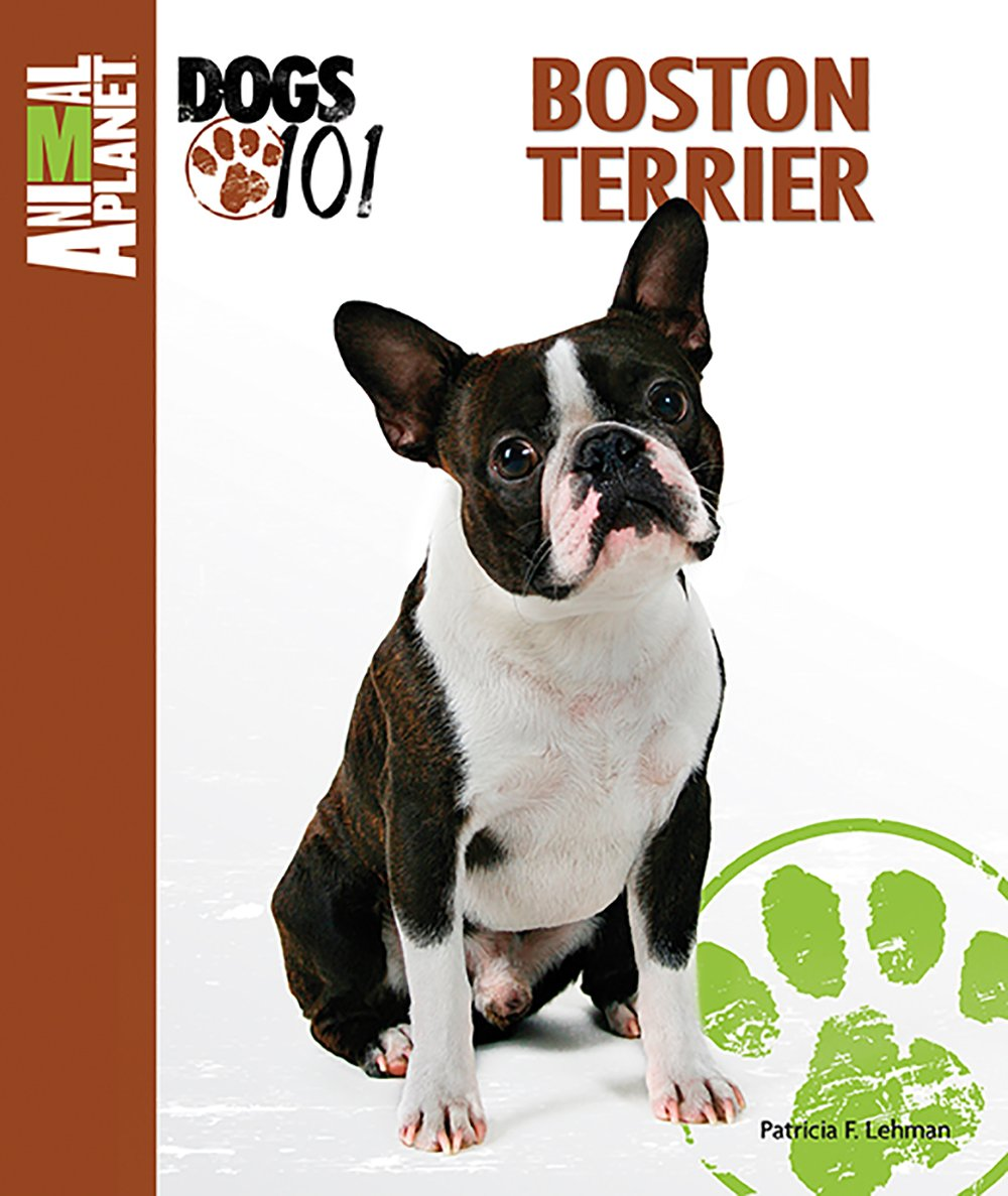 Boston Terrier (Animal Planet® Dogs 101)