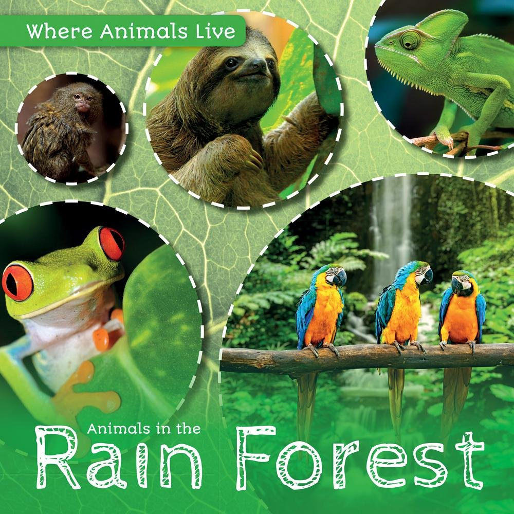 Download Animals in the Rain Forest (Where Animals Live) ebook