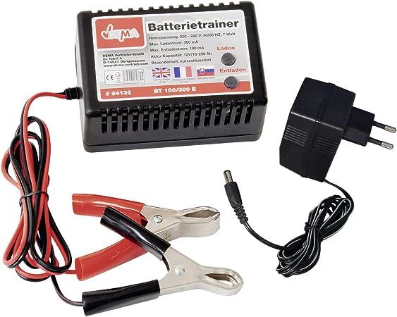 Dema Car Battery Trainer For 12 Volt Batteries Baumarkt