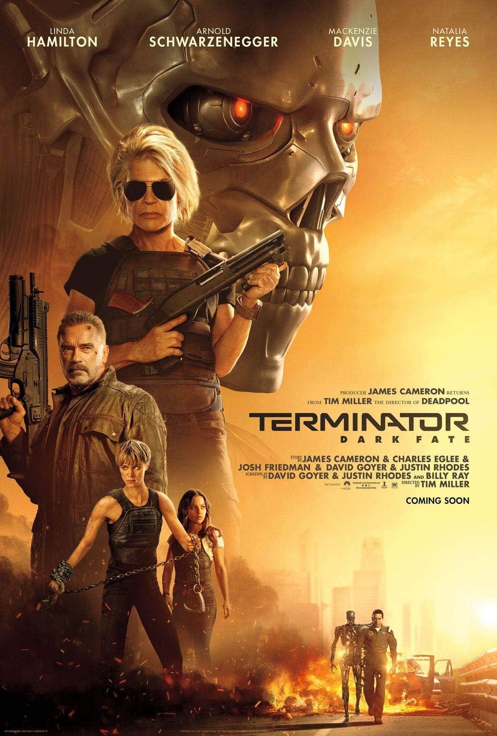 Lionbeen Terminator Dark Fate - Movie Poster - Filmplakat 70 X 45 cm. (NOT  A DVD): Amazon.de: Küche & Haushalt