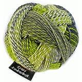 Schoppel-Wolle Crazy Zauberball, Grün
