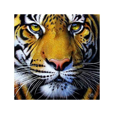 SUNSOUT INC Golden Tiger Face 1000 pc Jigsaw Puzzle: Toys & Games