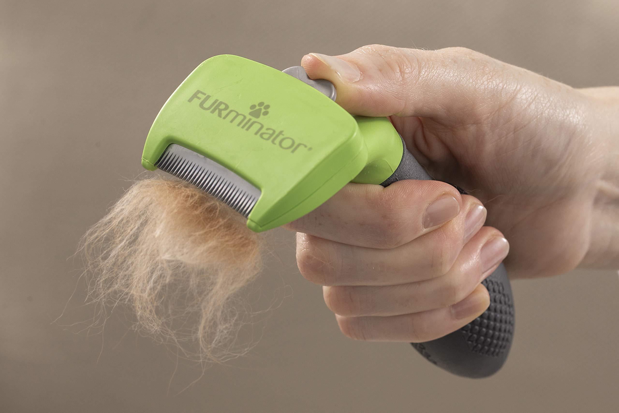 Furminator 141037 Dog Deshedding S Long Hair S by Furminator