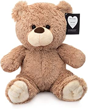 Inventiv Teddy Bear with Pouch, Easily Insert a Recordable Sound Module (Sold Separately), Plush Toy Stuffed Animal (Teddy Bear w/ Pouch)