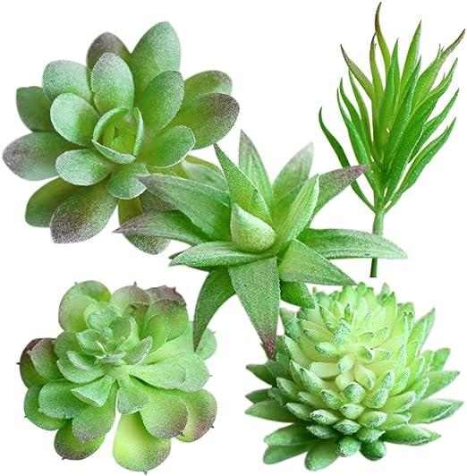 WINOMO Mini Plantas Suculentas Artificiales Decoración para Oficina Jardín Mesa Casa 5 Piezas: Amazon.es: Jardín