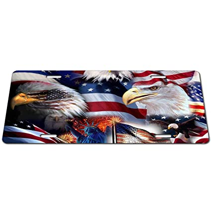 68eeeb52 Amazon.com: Steven Smedley American Flag, Statue of Liberty, Flying ...
