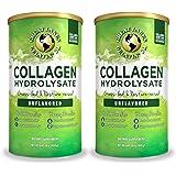 Great Lakes Gelatin, Collagen Hydrolysate, Kosher, 16 oz. 2 Pack