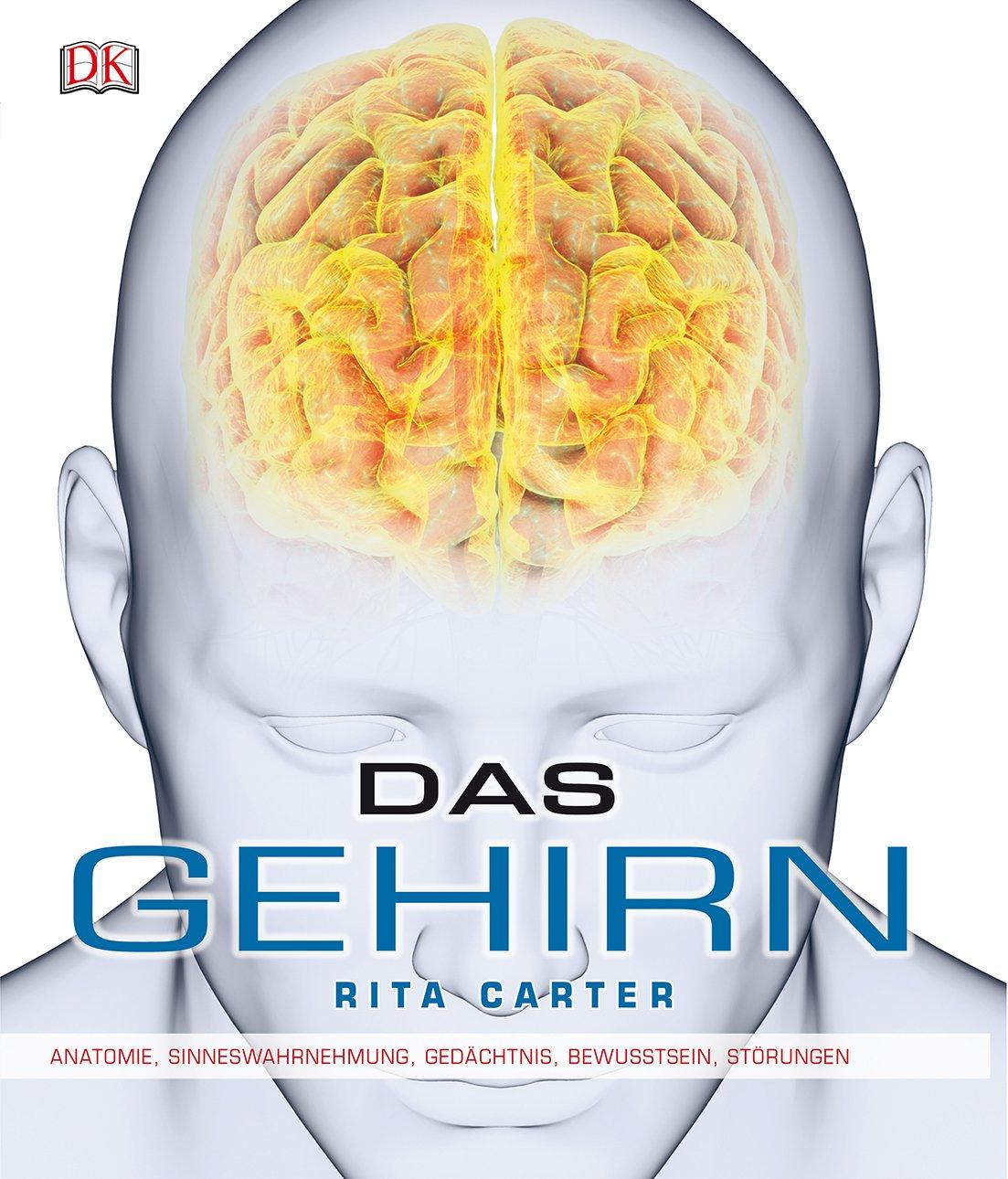 Das Gehirn  Anatomie Sinneswahrnehmung Gedächtnis Bewusstsein Störungen