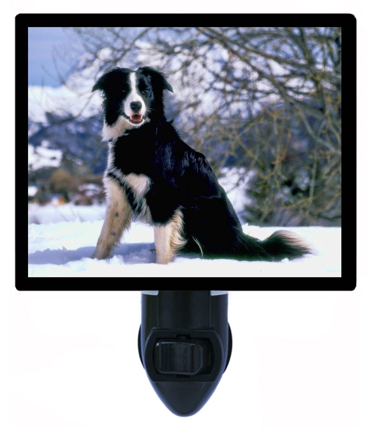 Dog Night Light - Border Collie