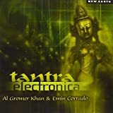 Tantra Electronica