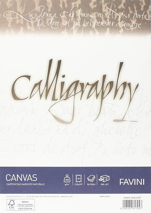 48 opinioni per Favini A69Q314 Calligraphy Canvas Ruvido