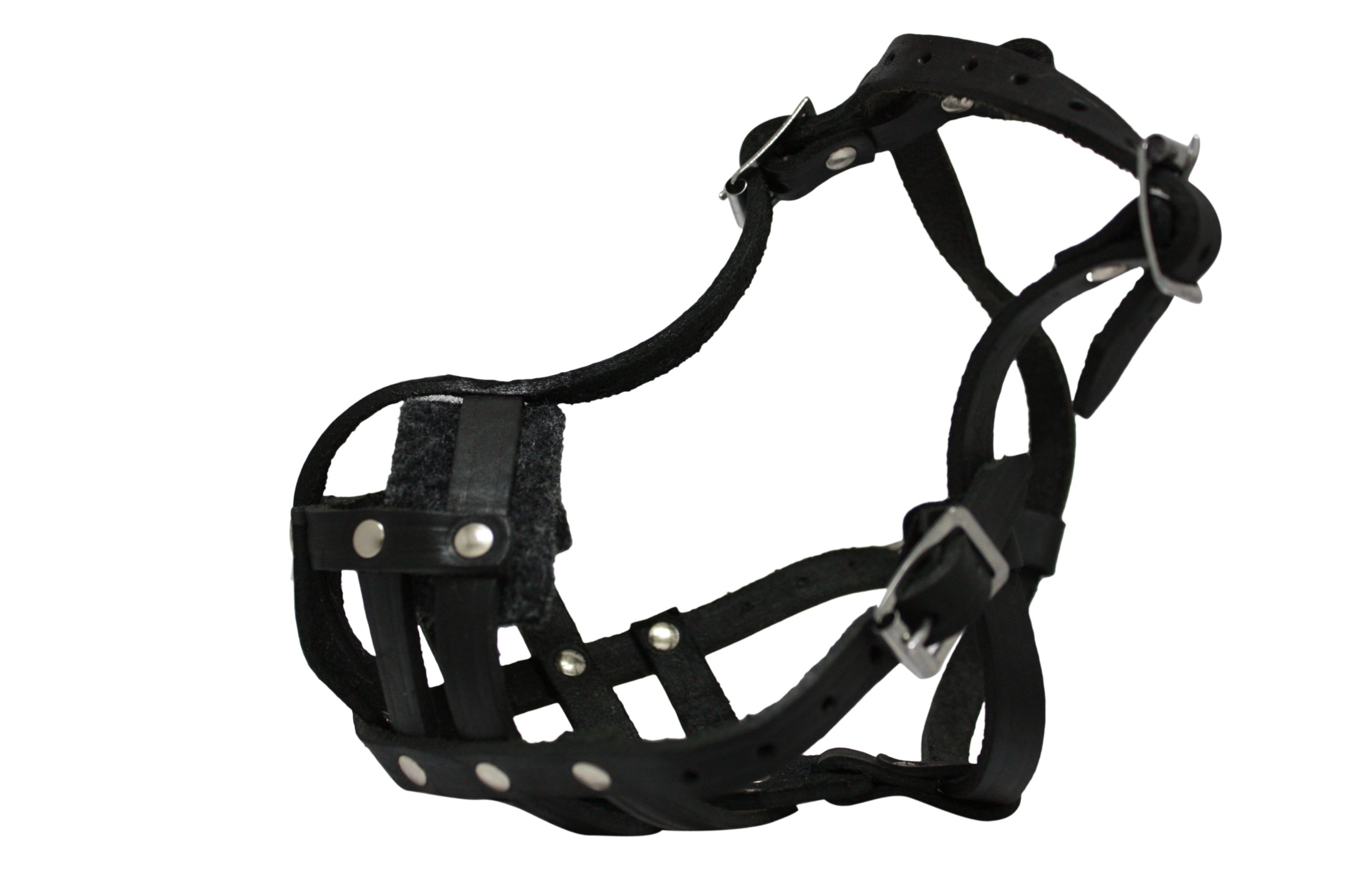 Leather Basket Muzzle (Boston). BM1, Black. 9'' circumference, 2'' length. Best fits breeds like French Bulldog, Pug, Boston Terrier.
