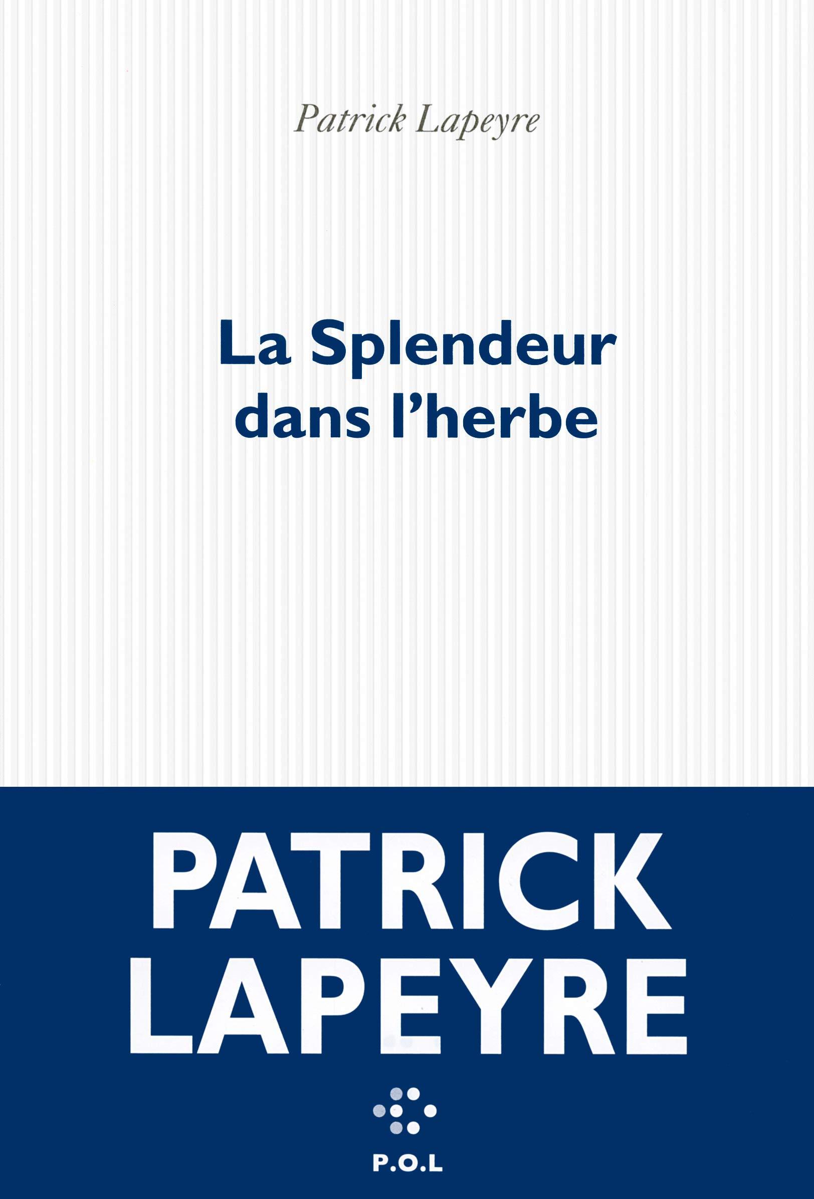 Amazon Fr La Splendeur Dans L Herbe Lapeyre Patrick Livres