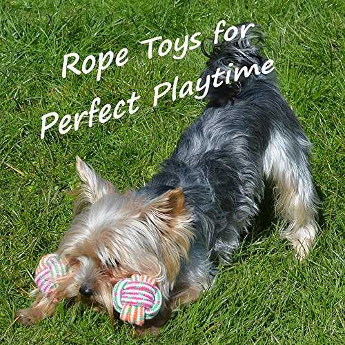 Large Product Image of Puppy Chew Teething Rope Toys Set, Mini Dental Pack For Small To Medium Dogs