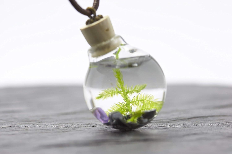 Unterwasserwelt Moos H/ämatit Amethyst echte Wasserpflanze Aquarium Kette/…