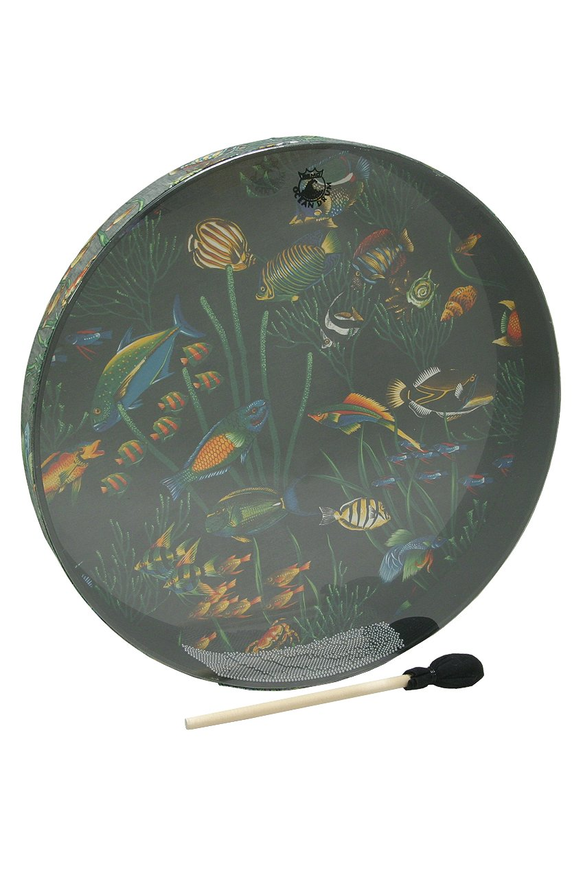 Remo OCEAN DRUM, 22-by-2.5-Inch, FISH (Package Of 3)