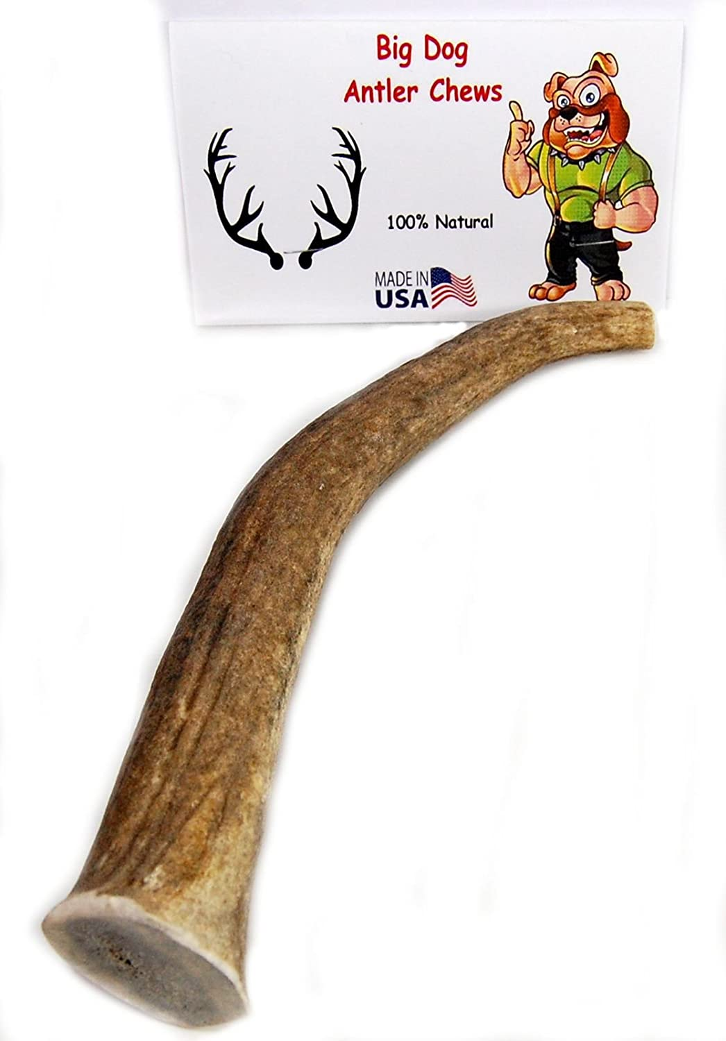 Big Dog Antler Chews Elk Antler Dog Chew, Extra Large Tine, 8 inches to 12  inches, XL - Great for Your Large to Extra Large Dogs and Puppies Brand
