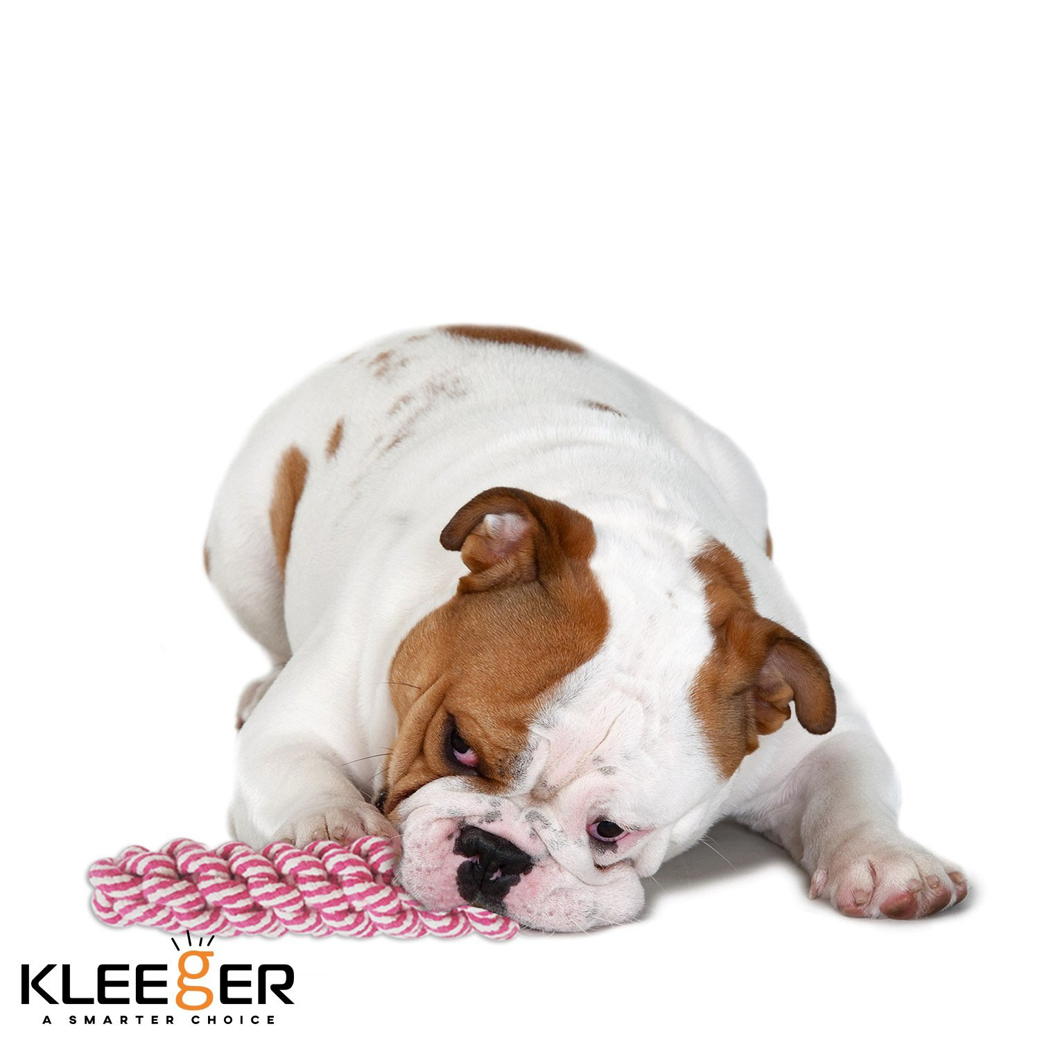 Pet Supplies Kleeger Dog Toy Set Durable 10 Pack Puppy Toy