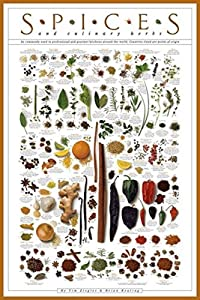 Laminated Spices and Culinary Herbs Gourmet Kitchen Cooking Chart Poster 24x36