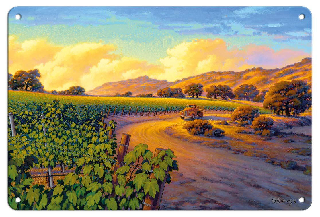 Pacifica Island Art 8in x 12in Vintage Tin Sign - Vineyard Sunset by Kerne Erickson