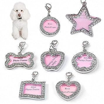 PJX TECH Placa identificativa para Perros y Gatos, 7 ...