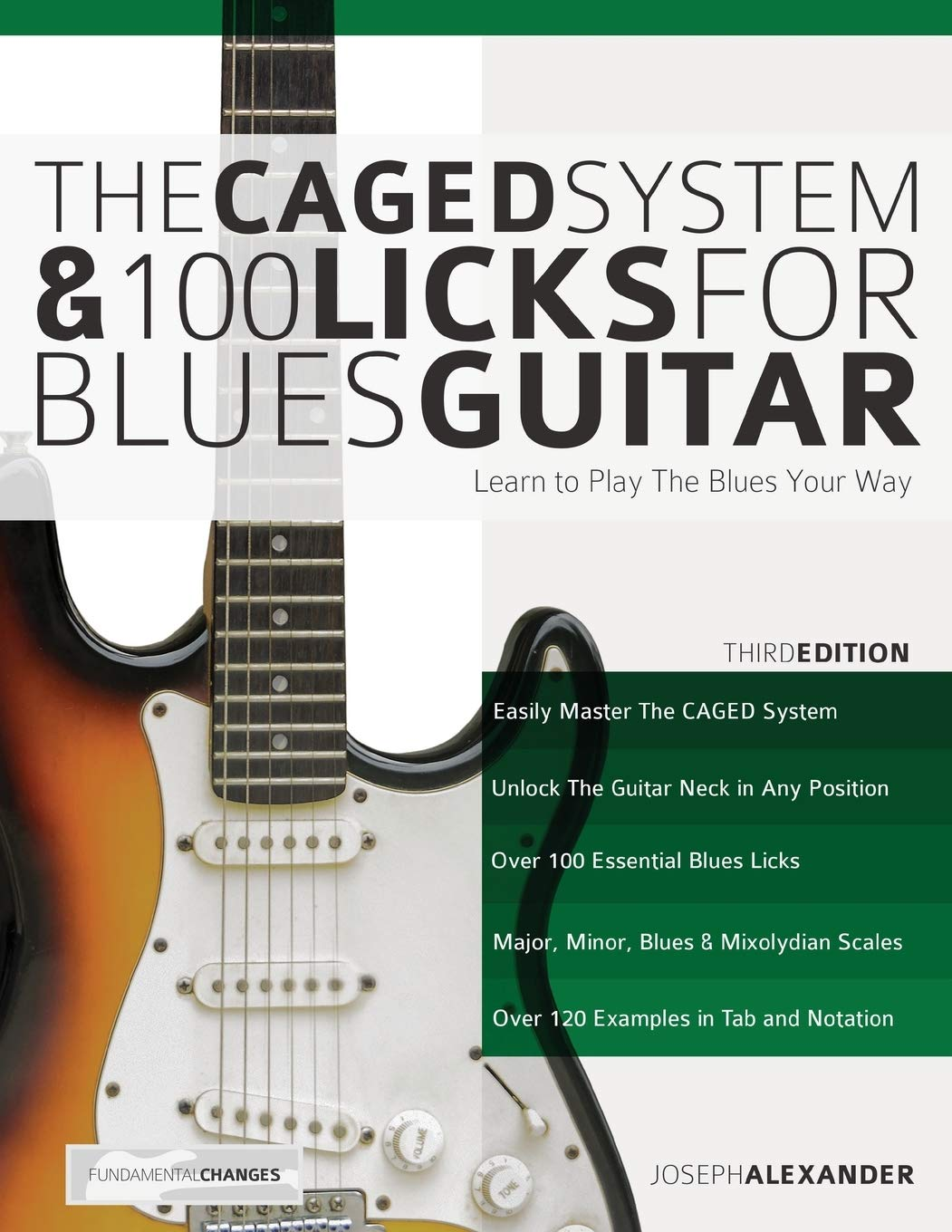 The Caged System /& 100 Licks for Blues Guitar 3rd Edition TAB SAME DAY DISPATCH