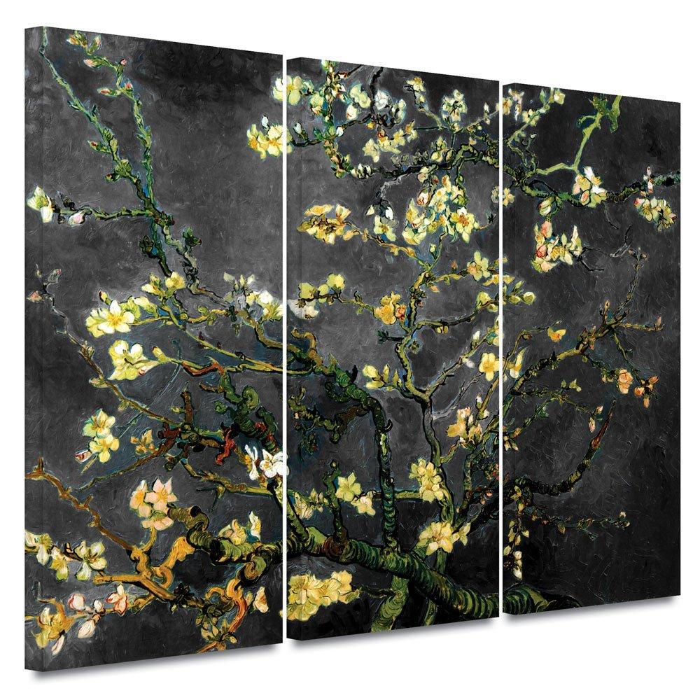 ArtWall 3-Piece Vincent Van Gogh Almond Blossom Interpretation Gallery Wrapped Canvas Artwork, 36 by 54-Inch, Dahlia Black by Art Wall