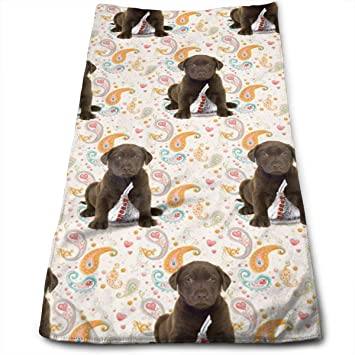 Amazoncom Puppy Chocolate Lab Kisses Kitchen Dish Towels With
