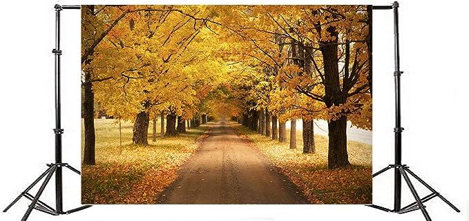 OERJU 12x10ft Autumn Scene Backdrops for Photoshoot Maple Trees Background Photography Fallen Leaves Ground Sunshine Background for Photoshoot People Portrait Photo Props Video Making Vinyl Wallpaper