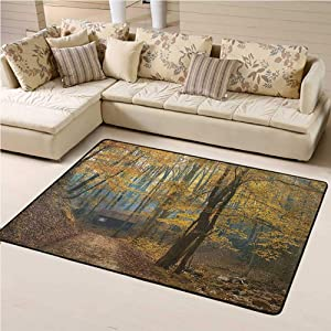 Modern Area Rug Fall Tree Easy Clean Stain Fade Resistant Autumn Season Woodland 4' x 6' Rectangle