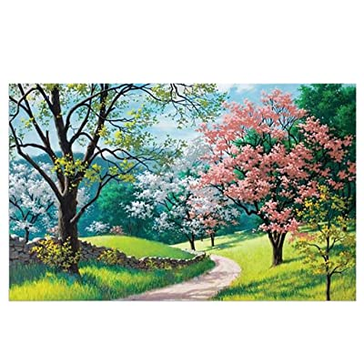 Voberry Puzzles for Adults 1000 Piece, Spring Country Road Jigsaw Puzzles Children's Puzzle Toy, Blossoming Path Jigsaw Puzzle, DIY Collectibles Modern Home Decoration 27.56 x 19.69 inch: Toys & Games