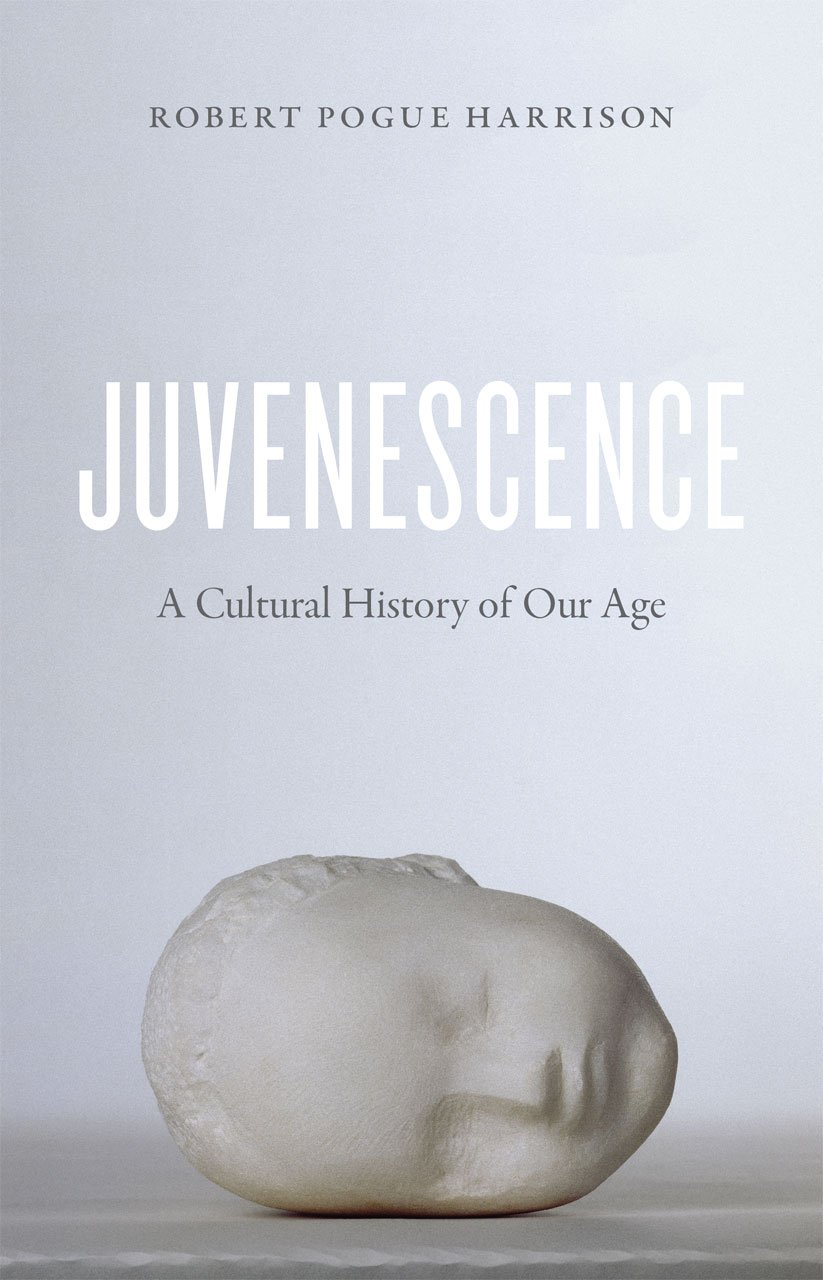 Juvenescence  A Cultural History Of Our Age