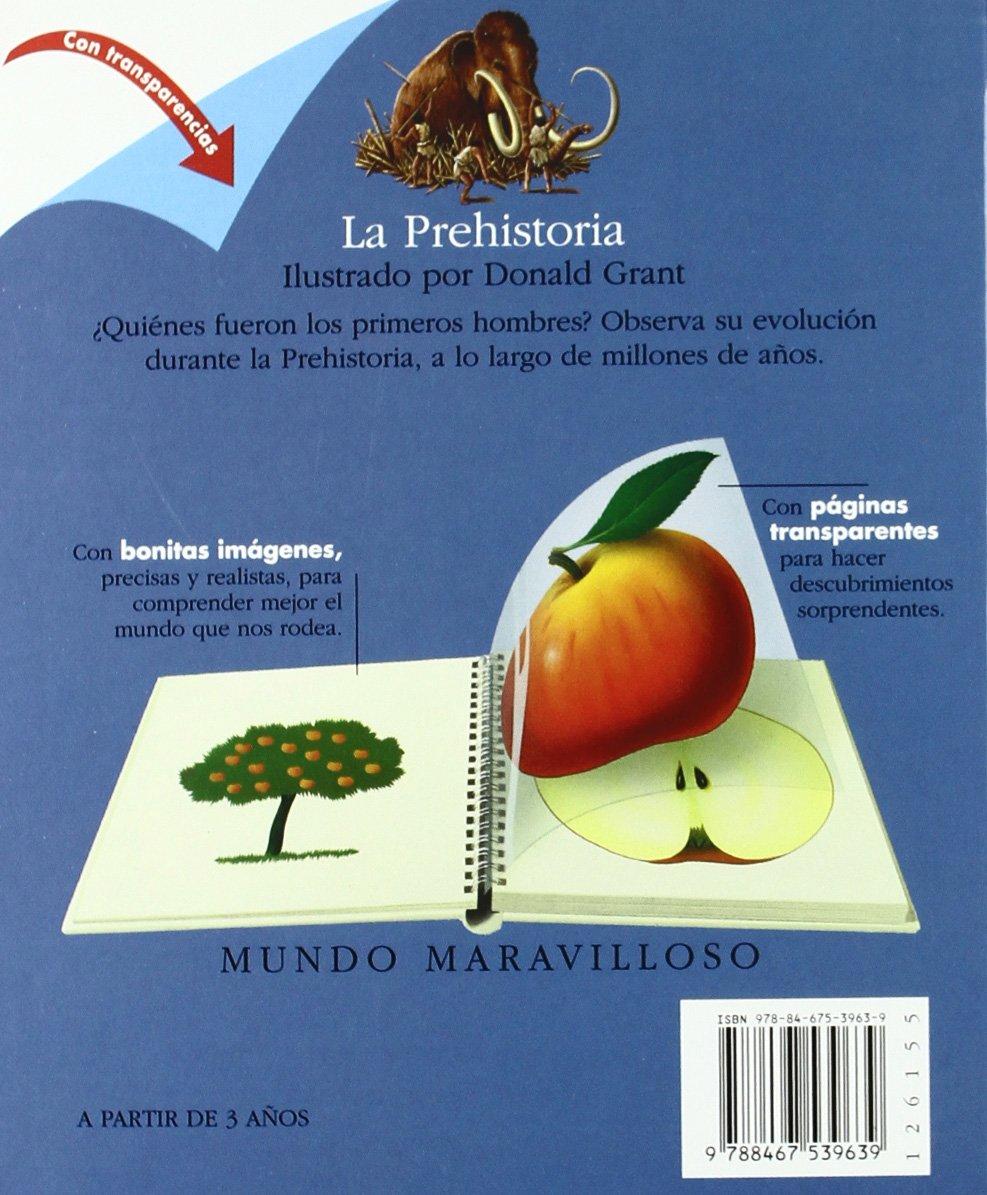 La Prehistoria (Mundo maravilloso): Amazon.es: Chabot, Jean-Philippe, Grant, Donald, Tellechea, Teresa: Libros