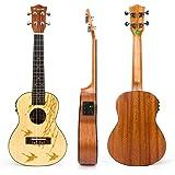 Ukulele Concert Electro Acoustic Solid Spruce Ukelele Uke 23 inch 4 String Hawaii Guitar with Aquila Strings Flying Bird Pattern by Kmise