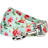 Blueberry Pet 10+ Patterns Durable Spring Scent Inspired Floral/Camo Print Dog Leashes