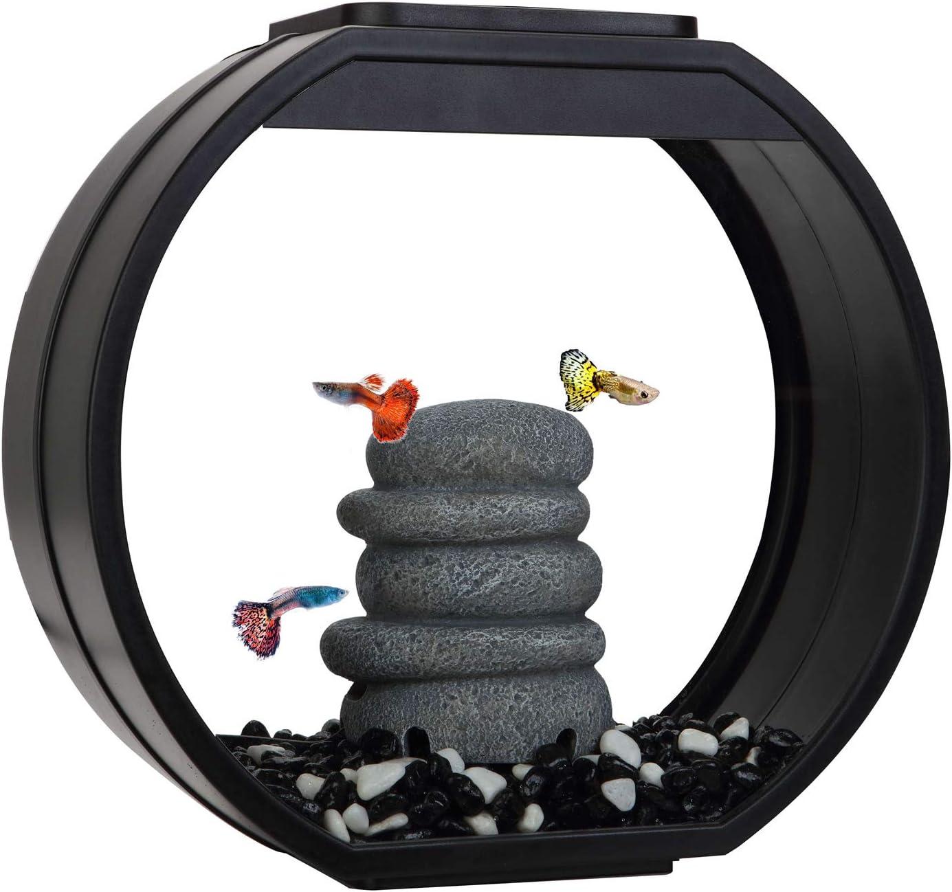 Fish R Fun Vasca Decorativa per Pesci