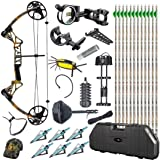 TOPOINT M1 20-70LB COMPOUND BOW ARROW HUNTING TARGET ARCHERY HARD BOW CASE
