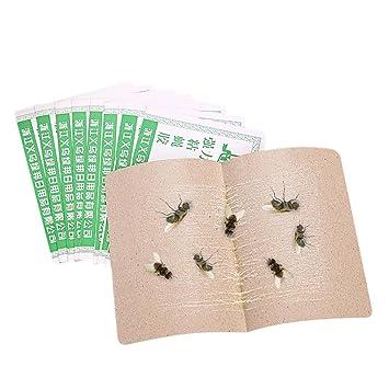 YJYda 10 piezas pegajoso papel moscas moscas trampa insectos atrapasue/ños tabla