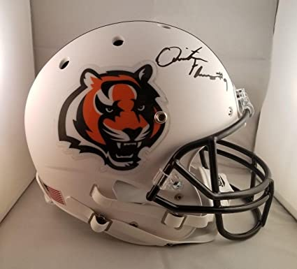 Quinton Flowers Signed Helmet - Full Size - JSA Certified - Autographed NFL  Helmets 909deea4e