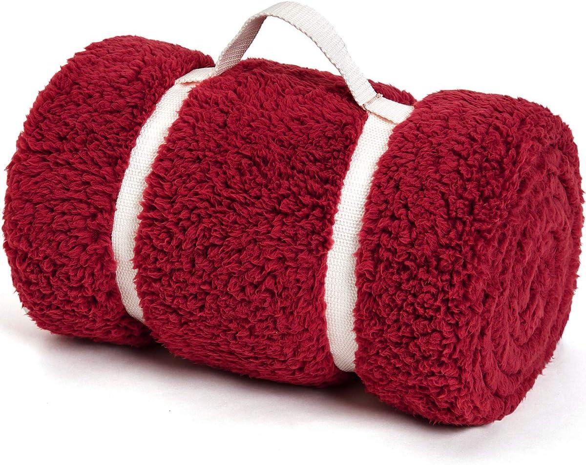 Gonaap Sherpa Throw Blanket Cozy Fluffy Warm Microfiber Fleece Shaggy Lightweight Teddy Plush For Coach Sofa Travel Outdoor Camping Burgendy 6080 Kitchen Dining