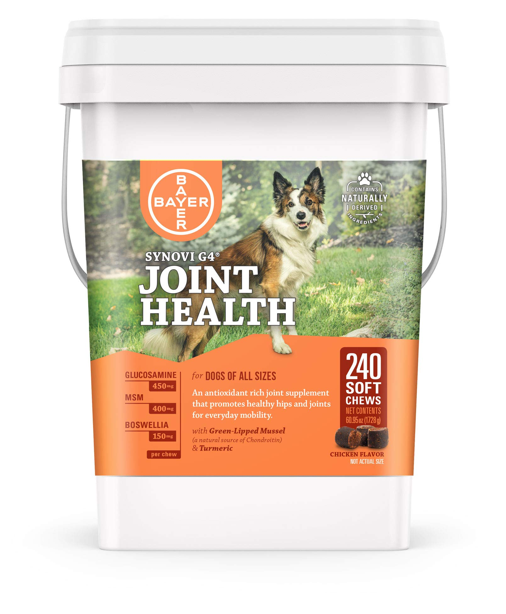 Bayer Synovi G4 Soft Chews Glucosamine Joint Supplement for Dogs, 240 count