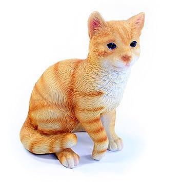 Gato Figura de gato, Naranja getigert - Figura de resina para jardín y casa, aprox. 10 cm x 8 cm x 13 cm: Amazon.es: Jardín