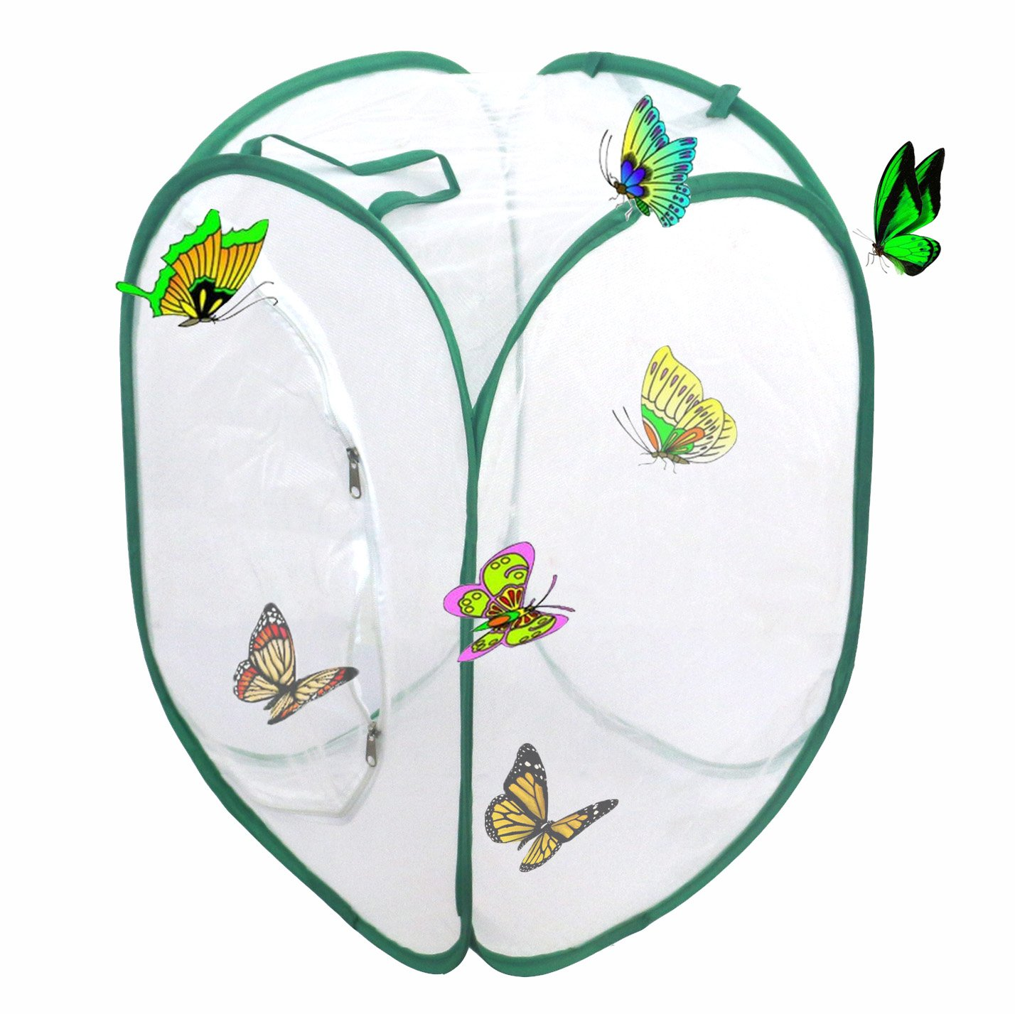 Trasfit Insect and Butterfly Habitat Terrarium - 23.6 Inches Tall